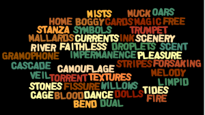 We Wordle #17