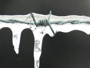 barbed wired icicle representing pain and unforgiveness