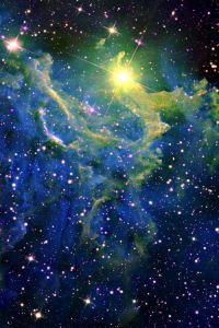 garden-of-stars
