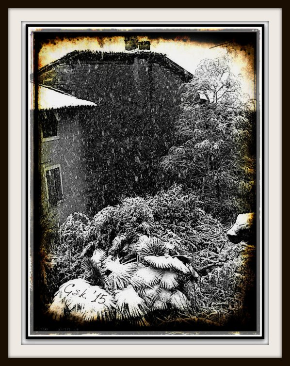 Rustic snow with firmaFramed
