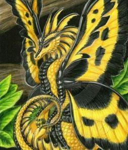 butterflydragon1