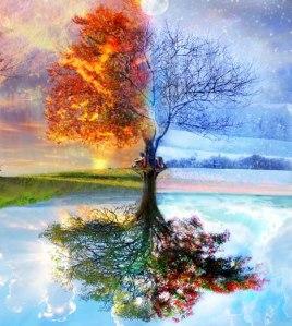 tree_seasons