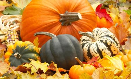 pumpkinfallleaves