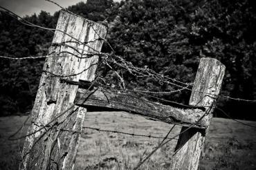 wood-1772379_960_720