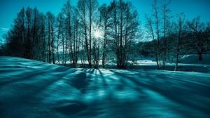 Fantastic Winter Scene In Monochrme HD Desktop Background