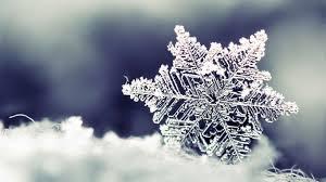 lingering-snowflake