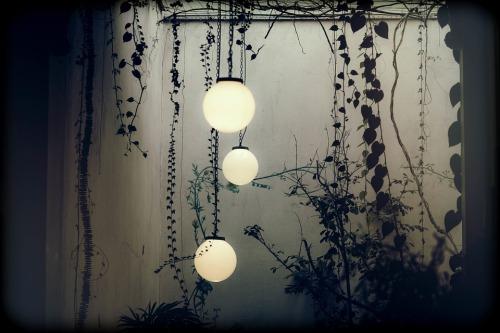 lamplight of soul.jpg
