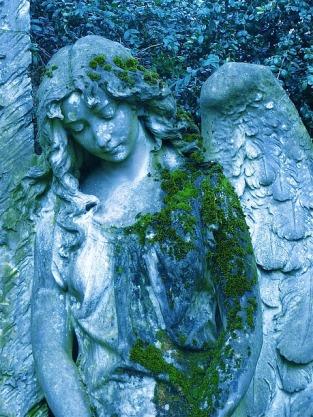 angel-422535_640