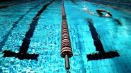 swimming-924895_1920
