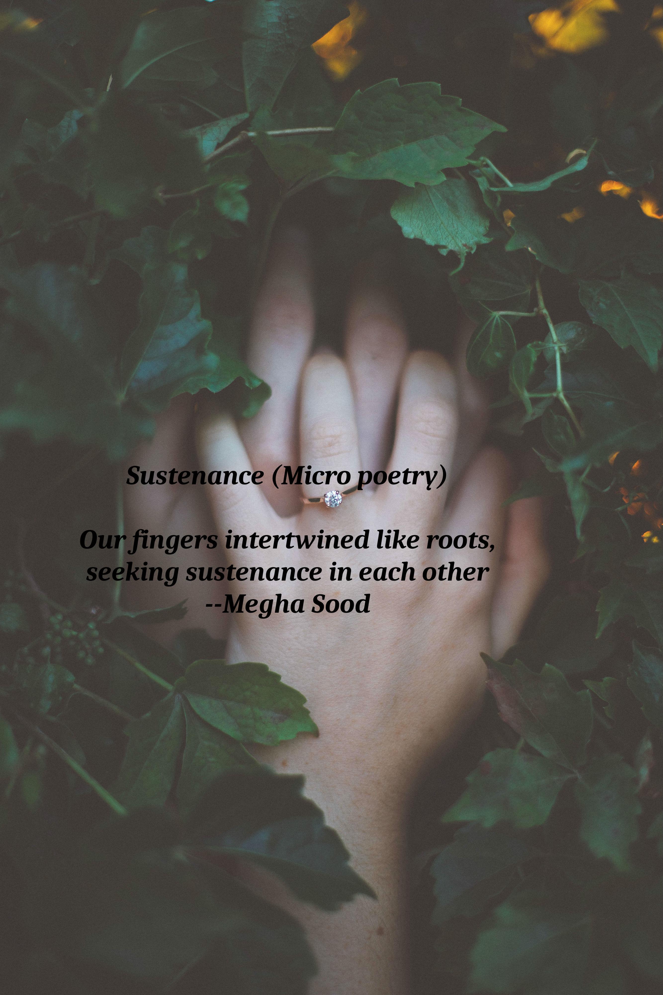 Sustenance_MP