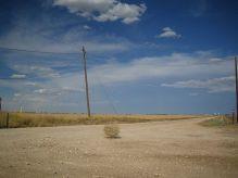 640px-Tumbleweed_rolling