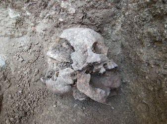 vampire_burial_skull-uanews