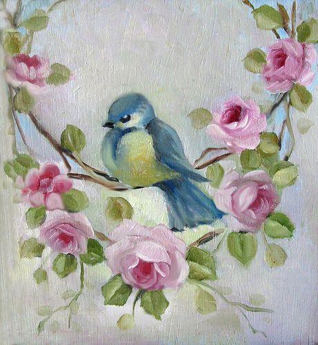wow a lovely bluebird!