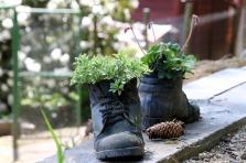 shoes-1416013_1920