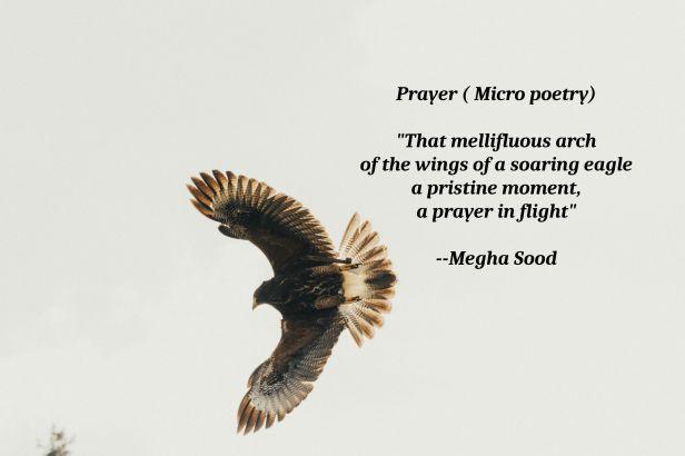 Prayer_MP.jpg