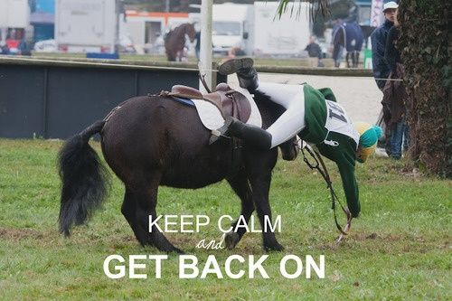 get back on the horse