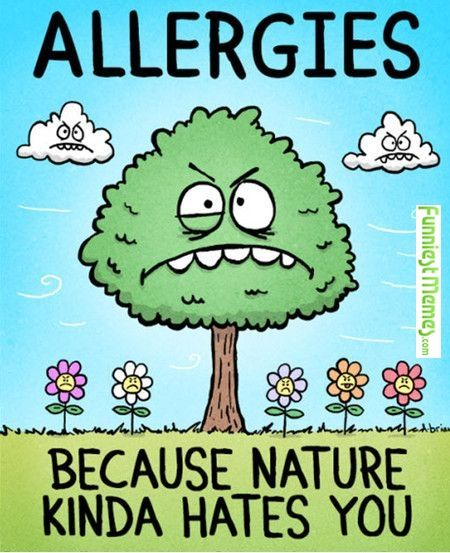 Allergy season