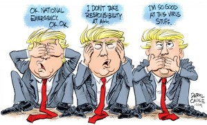 Trump pandemic response (2)